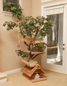 cat-tree-houses-design